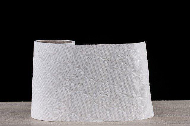 toilet-paper-2923445_640.jpg